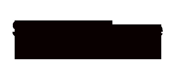 Shoals Torque Converters